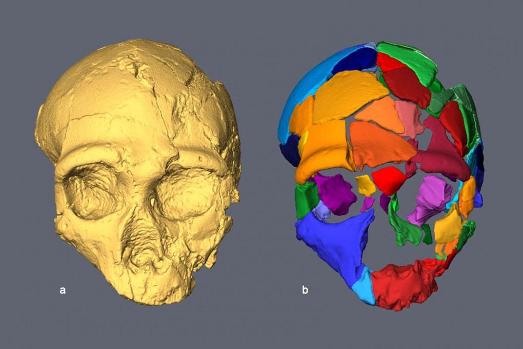 Homo sapiens: in Europa già 210.000 anni fa