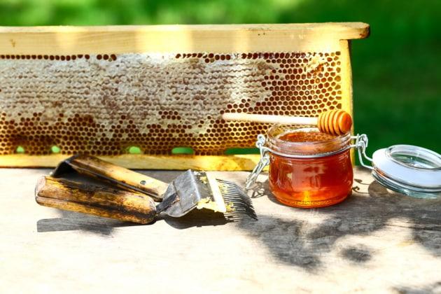Dentro un barattolo di miele: qualità, etichettatura e consumi