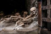 scheletri-ercolano