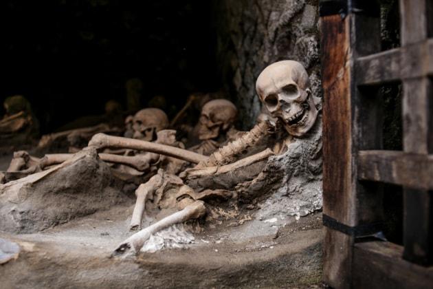 Eruzione del Vesuvio del 79 d. C.: le vittime finirono per