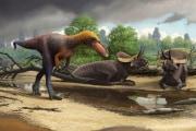 Dinosauri: il piccolo della famiglia dei T. Rex