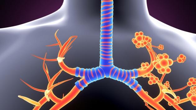 Una membrana ispirata ai polmoni per ricavare energia dall'acqua