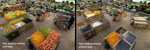 le api e la sicurezza alimentare