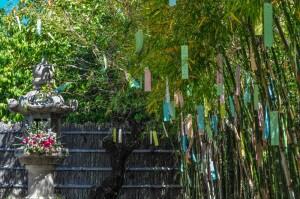 Tanabata, Bambù, Tanzaku.