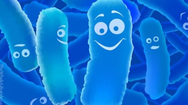 Probiotici, quante ne sai?