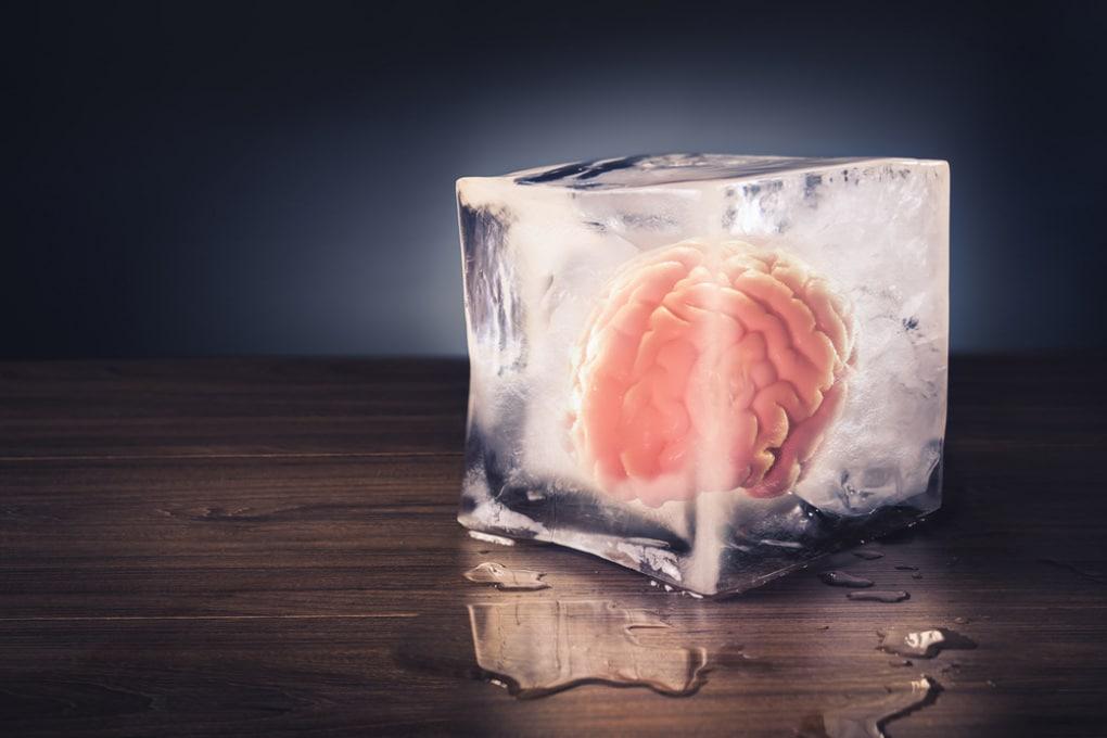 Con la morte il cervello cessa del tutto di funzionare? Non immediatamente