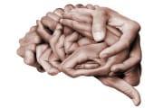 cervello-concettuale_shutterstock_1219742488