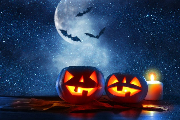 Halloween, festa delle zucche e dei pipistrelli