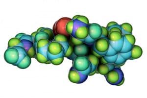 ossitocina, autismo, disturbi dello spettro autistico, sindrome di Asperger
