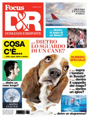 Focus D&R, cani, empatia, comportamento dei cani, pet