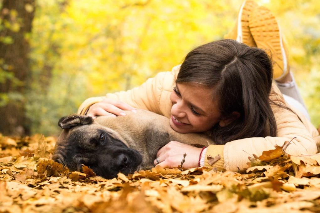 Come i cani capiscono le nostre emozioni?
