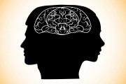 cervello-h-d