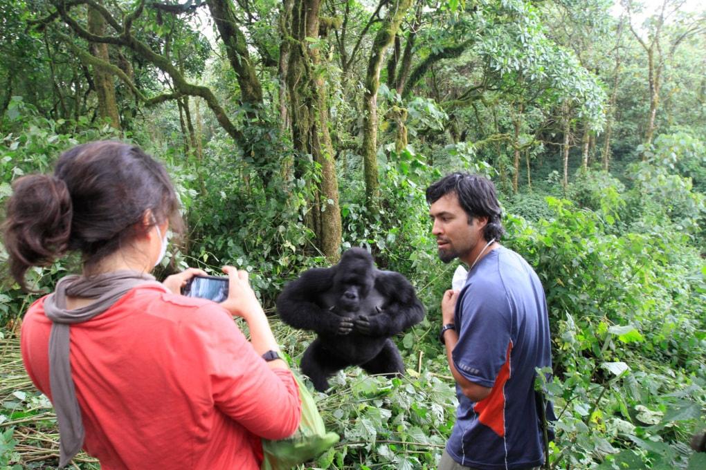 I selfie con gli animali selvatici sono un pericolo (per loro)
