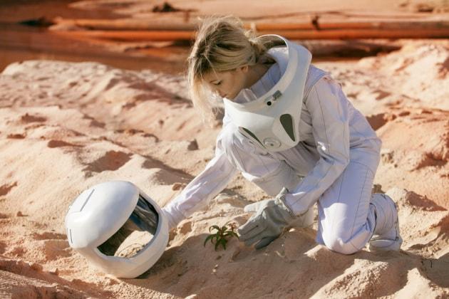 Niente spinaci su Marte (ma altre piante crescerebbero bene)