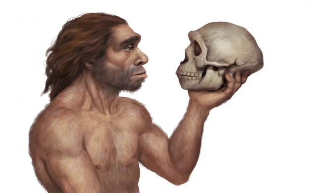 I Neanderthal usavano la colla