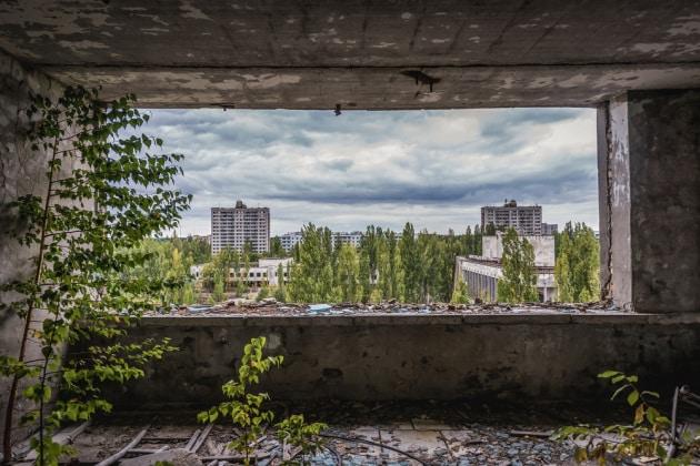 piante-chernobyl