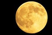il-sorgere-della-luna_amorvena-mengarelli
