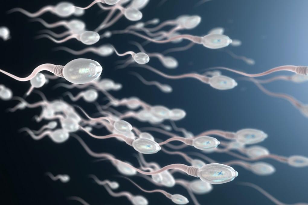 Negli USA: editing genetico sugli spermatozoi