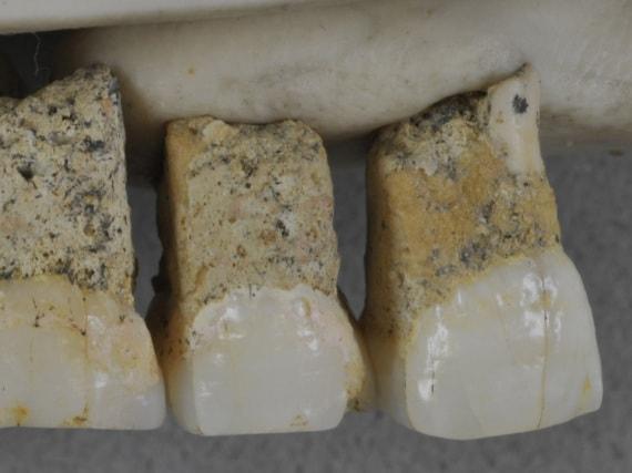 paleoantropologia, fossili, uomo di Luzon, Homo luzonensis
