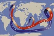 circolazione-termoalina