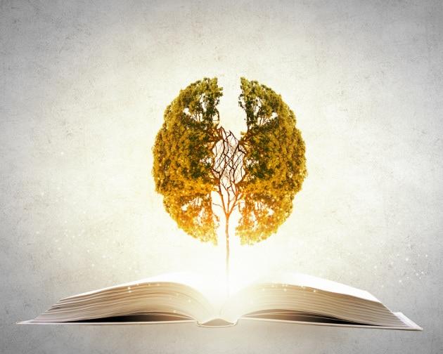 Perché un cervello istruito è più protetto dal declino cognitivo