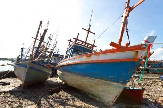 Il riscaldamento degli oceani assottiglia le riserve ittiche