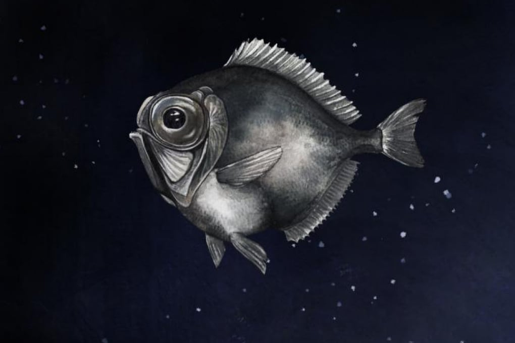 La supervista (inaspettata) dei pesci abissali: a colori, anche a 2.000 metri di profondità