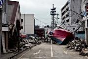 Uno tsunami trascinò a terra un pericoloso fungo tropicale