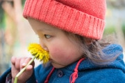 odore-fiori