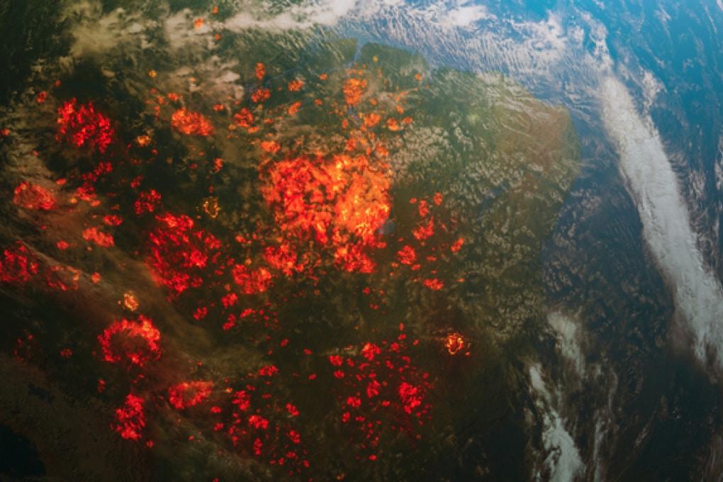Gli incendi in Amazzonia: figli dell'economia globale