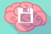 cervello-floppy